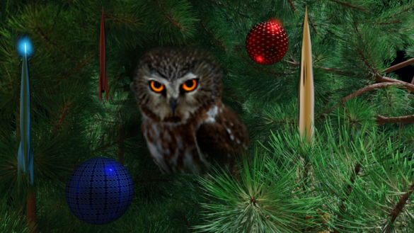 The Owl and some Hugo-shaped ornaments