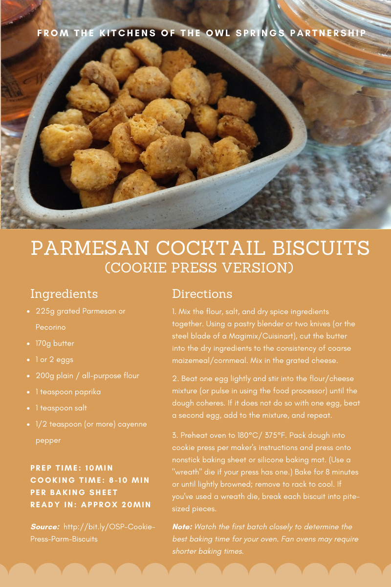 Parmesan Cheese Biscuit recipe